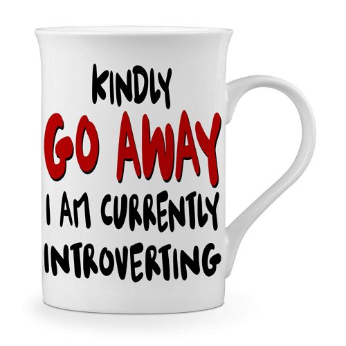 Kindly Go Away I'm Introverting Funny Novelty Gift